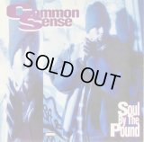 """Common Sense - Soul By The Pound/Can-I-Bust/Heidi Hoe  12"""""""